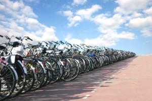 אופניים מתחת לשמיים